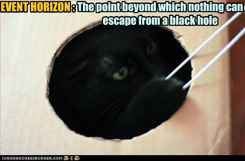 black,black hole,black holes,Cats,education,lolcat,nature,physics,science,space,strings