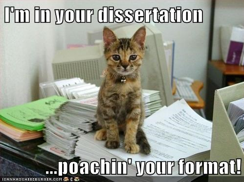 I'm in your dissertation  ...poachin' your format!