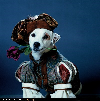 Goggie ob teh Week: Wishbone!