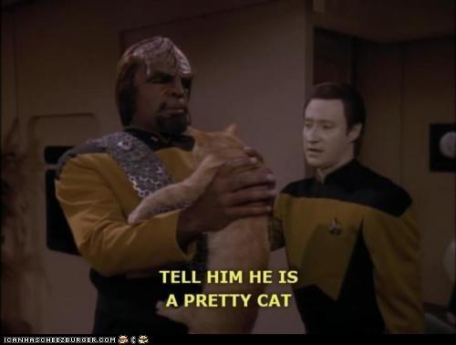 Cats,classics,pretty,Star Trek,Worf