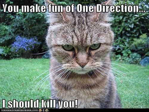 You make fun of One Direction...  I should kill you!