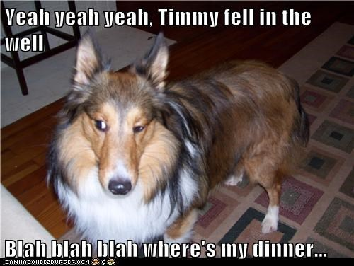 Yeah yeah yeah, Timmy fell in the well  Blah blah blah where's my dinner...