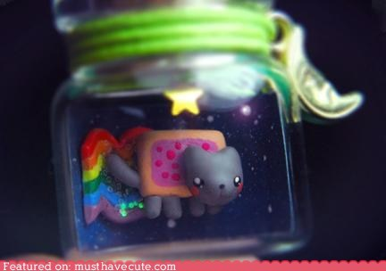Nyan Cat In a Jar