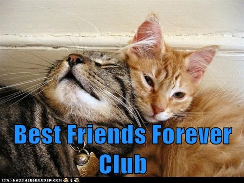 Best Friends Forever Club