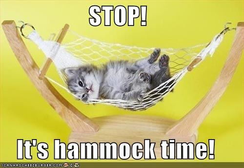 STOP!  It's hammock time!