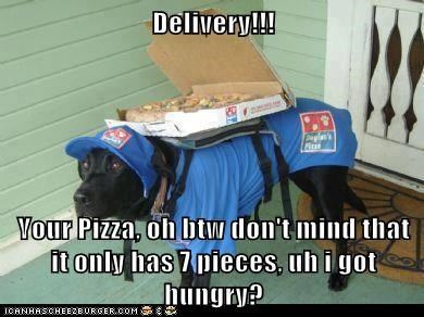 Delivery!!!  Your Pizza, oh btw don't mind that it only has 7 pieces, uh i got hungry?