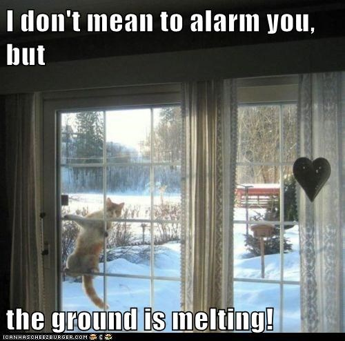 I don't mean to alarm you, but  the ground is melting!