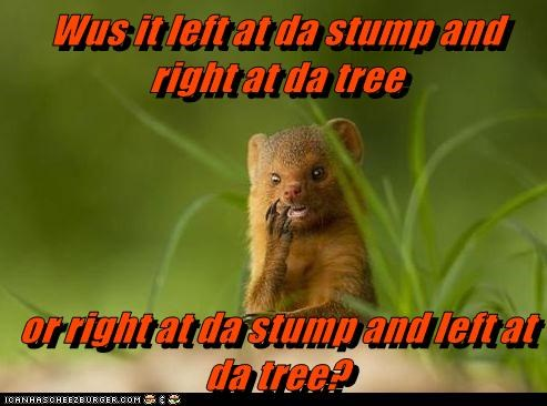 Wus it left at da stump and right at da tree  or right at da stump and left at da tree?