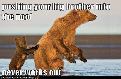 bears,big brother,little,never works out,pool,pushing,size