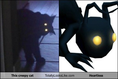 This Creepy Cat Totally Looks Like Heartless