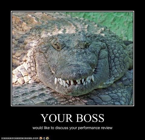 bosses,crocodile,crocodiles,discuss,evil,grin,performance review,scary,teeth,work