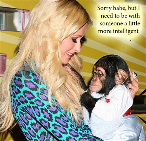 Blonde and Chimp -sorry babe