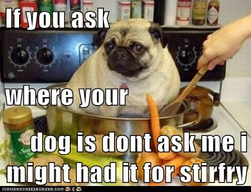 If you ask where your dog is dont ask me i might had it for stirfry