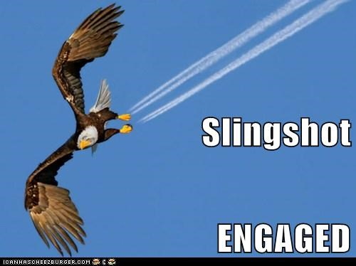 airplane,bald eagle,contrail,engaged,fire,position,pull back,slingshot