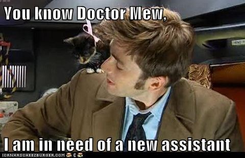 assistant,cat,cute,David Tennant,doctor who,kitten,mew,the doctor