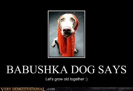 BABUSHKA DOG SAYS