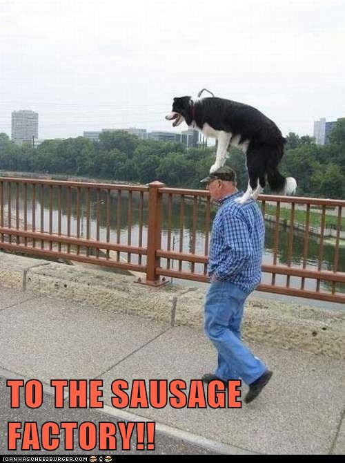 TO THE SAUSAGE FACTORY!!