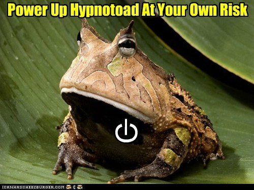 I Don't See What Could Possibly Go -- All Glory to the Hypnotoad