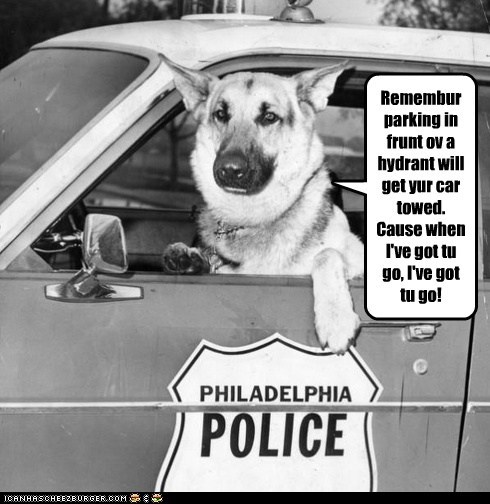 dogs,German Shepard,hydrant,police