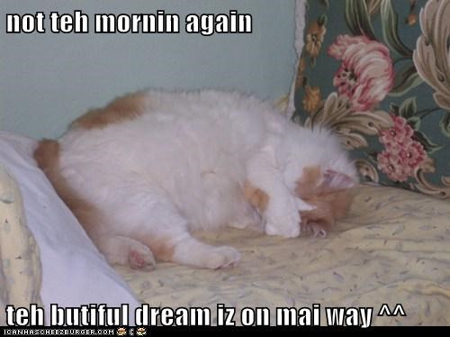 not teh mornin again  teh butiful dream iz on mai way ^^
