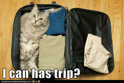 I can has trip?