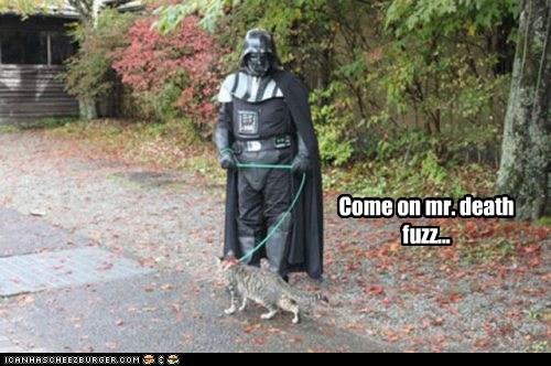 Come on mr. death fuzz...