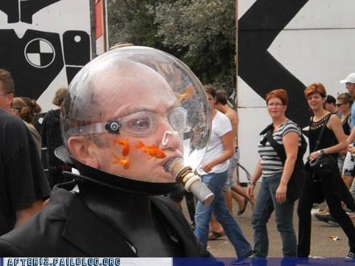 goldfish bowl,helmet,party hard