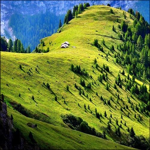 Italy,meadow,mountain