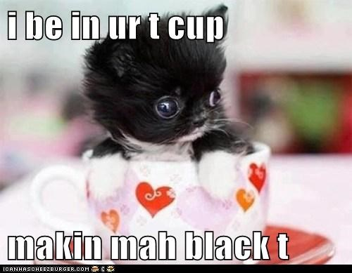 i be in ur t cup  makin mah black t