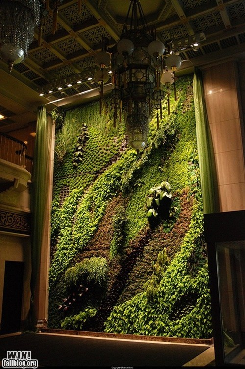 Vertical Garden WIN