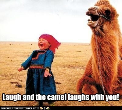 camel,fact,happy,idioms,kids,laughing