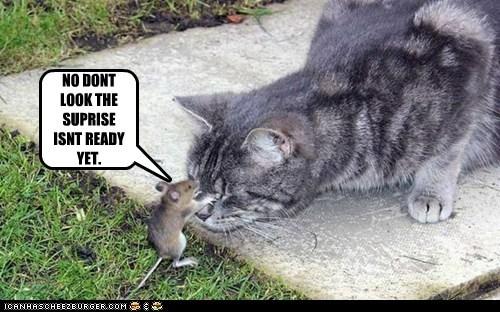 close,eyes,friend,look,mouse,Party,surprise