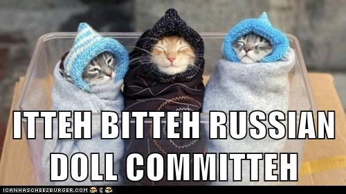 committee,Hall of Fame,itty bitty,kitten,russia,ussr