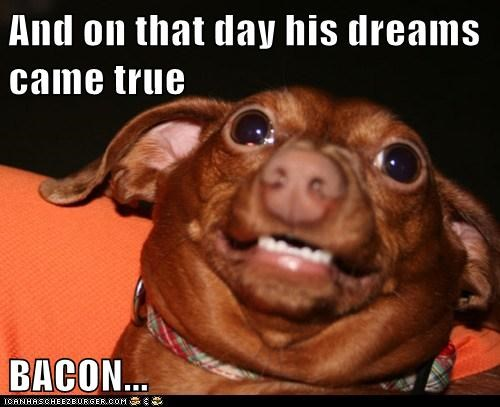 And on that day his dreams came true  BACON...