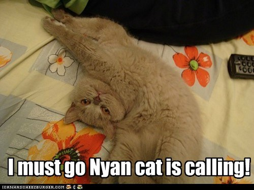 I must go Nyan cat is calling!