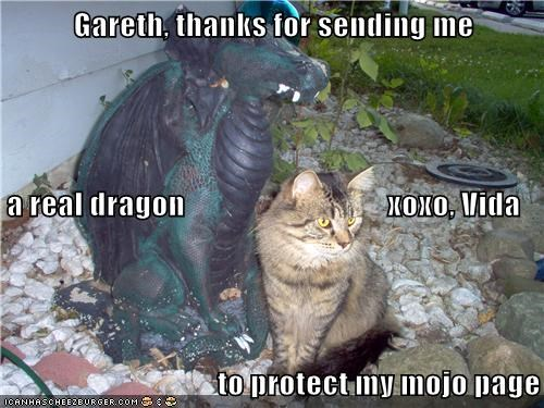 Gareth, thanks for sending me  a real dragon                                 xoxo, Vida to protect my mojo page