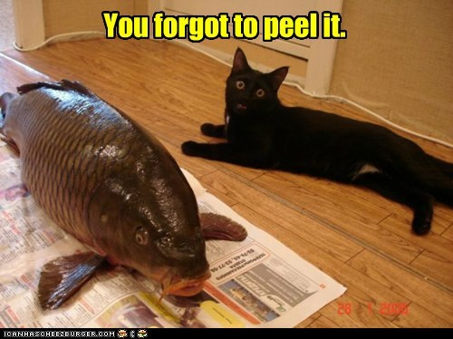 eat,fish,food,forget,nom,peel,remember