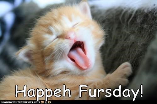 Happeh Fursday!