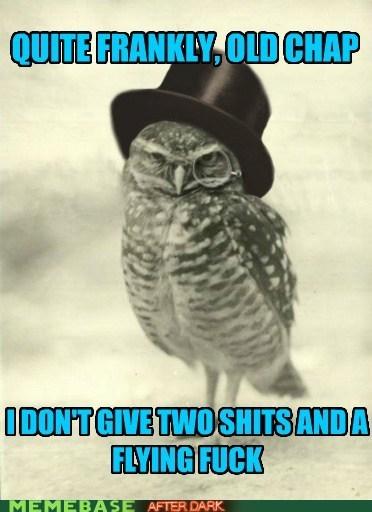 Disgruntled Owl is Disgruntled