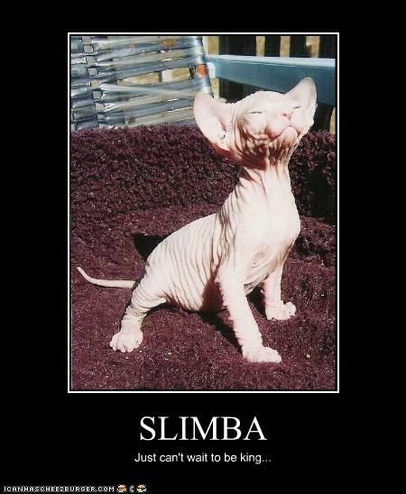 SLIMBA