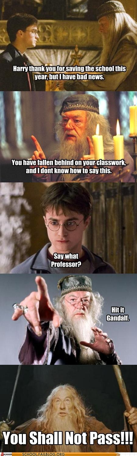 bad news,dumbledore,gandalf,Hall of Fame,Harry Potter,you shall not pass