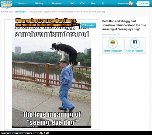 When you hover over a captioned image,  the recaption button will appear here. >>>
