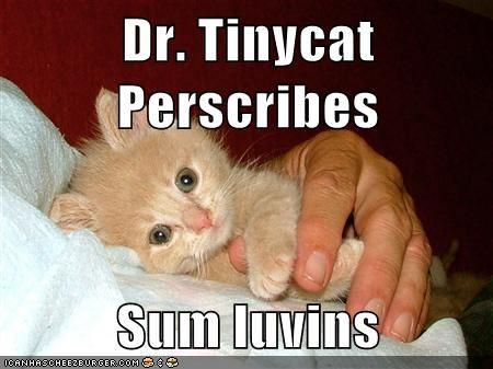 Dr. Tinycat Perscribes  Sum luvins