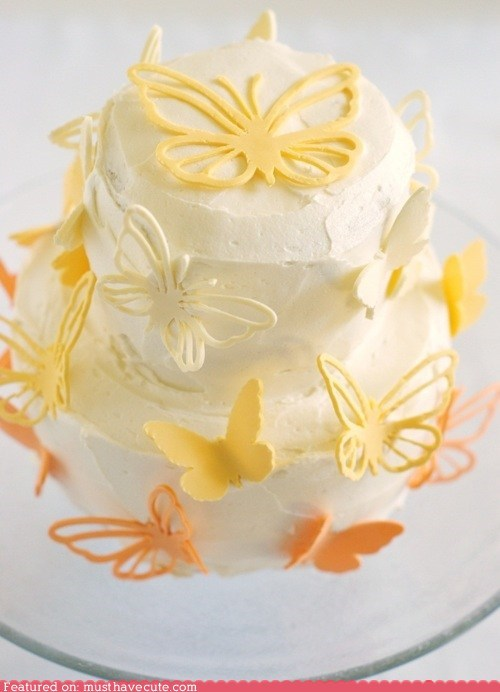 butterflies,cake,chocolate,epicute,fondant,frosting