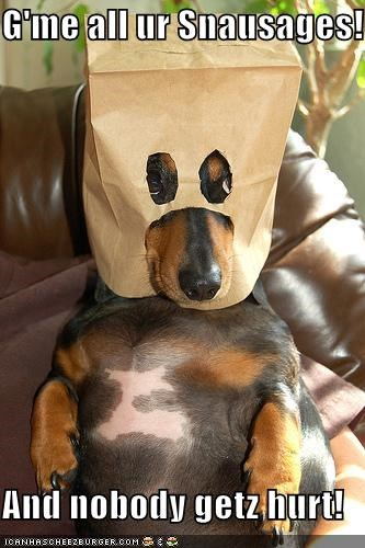 G'me all ur Snausages!  And nobody getz hurt!