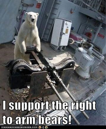 I support the right to arm bears!