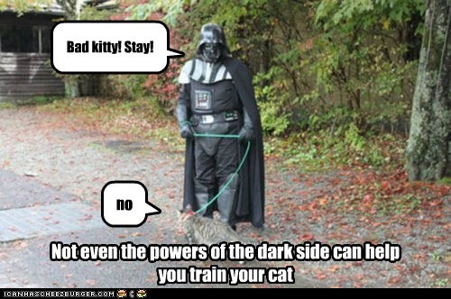 Not even the powers of the dark side can help you train your cat