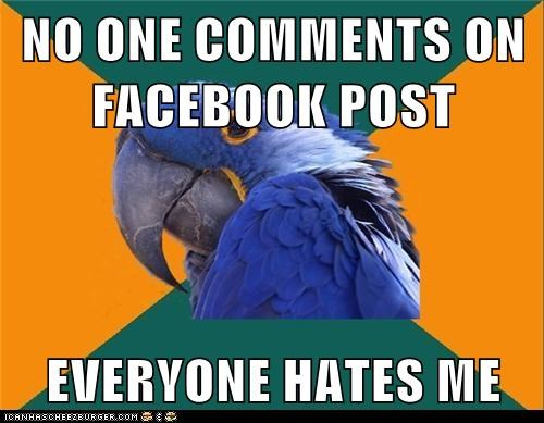 birds,facebook,Hall of Fame,hate,likes,paranoid,Paranoid Parrot,parrots