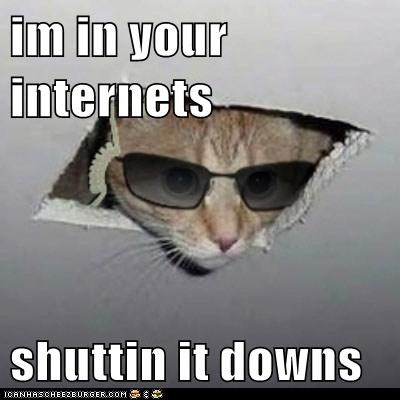 im in your internets  shuttin it downs