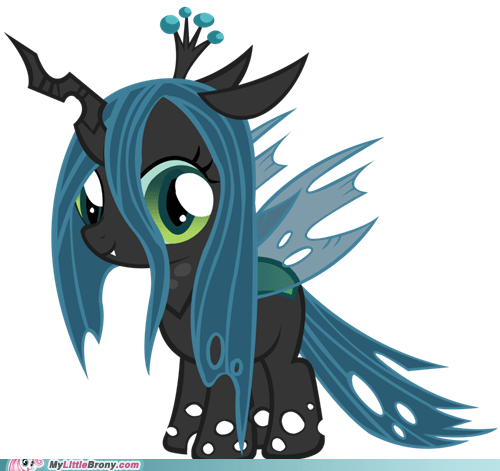 Chrysalis Filly